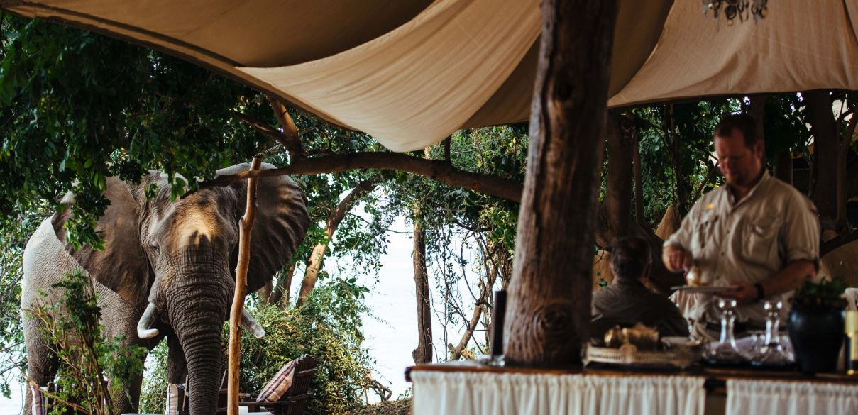 A guide to solo glamping